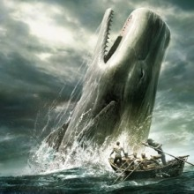 Moby-Dick-Photo-from-www.media_.photobucket.com_-300x300